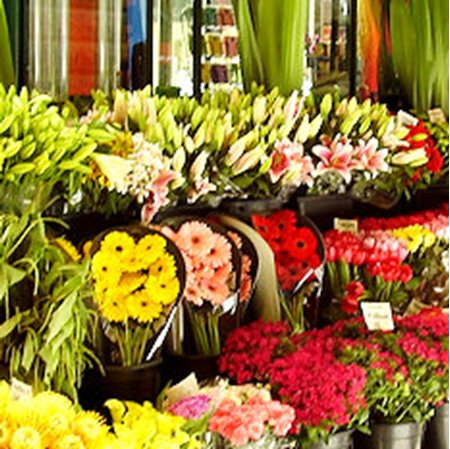 View Florists in Peebles